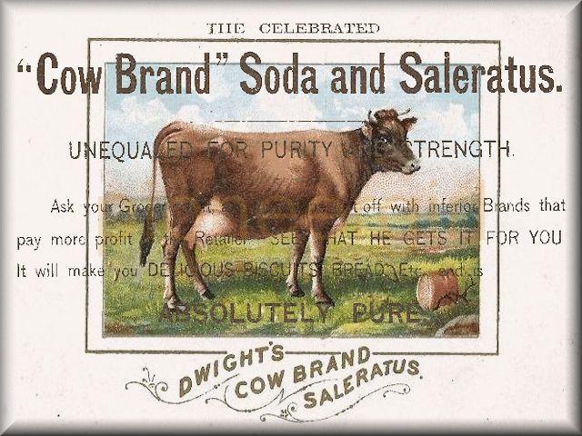 saleratus / soda