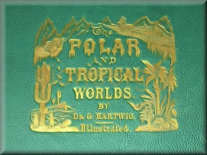 The Polar and Tropical Worlds