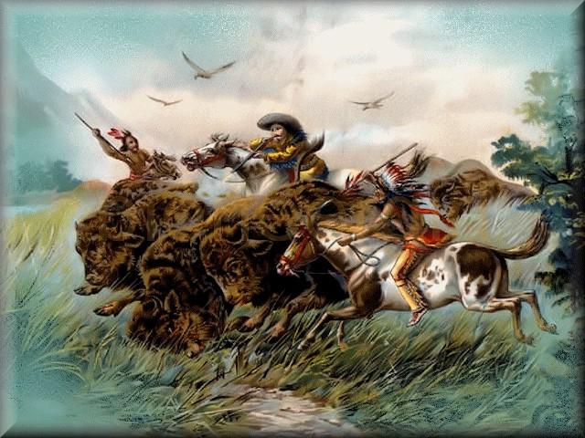 """bison / """"The Bison Track"""""""