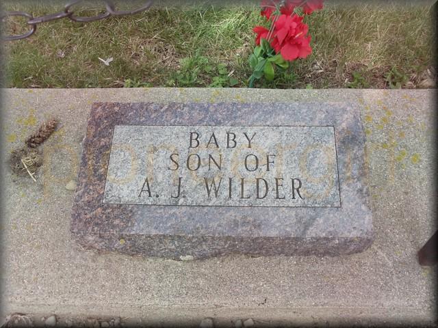 Baby Boy Wilder